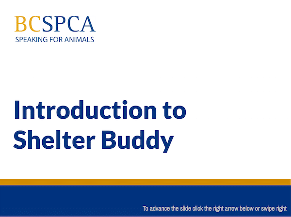 E-learning course example: Introduction to Shelter Buddy