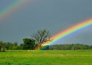 arainbow by rod trevaskus, available at http://www.geograph.org.uk/photo/962472